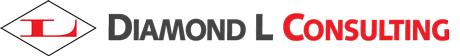 Diamond L Consulting Custom Web Application and Software Development